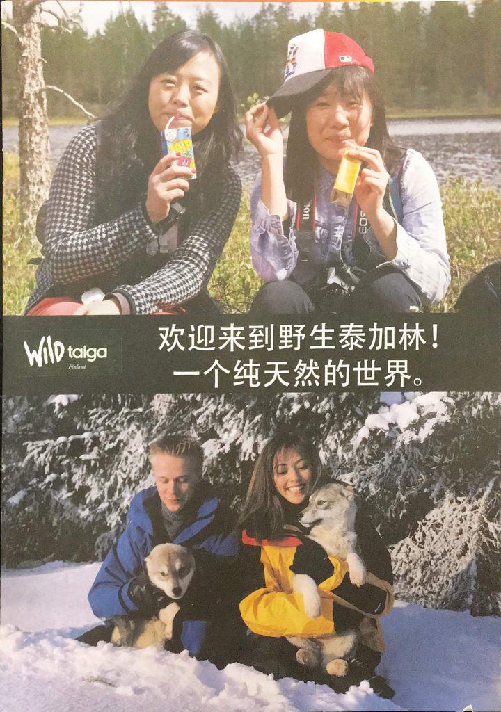 tekway-company-leaflets-brochures-taiga