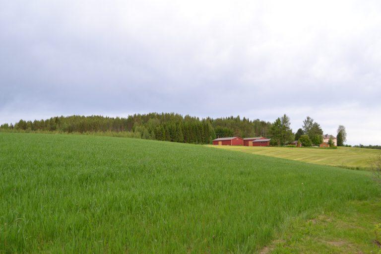 芬兰农村3