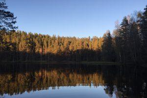 芬兰湖景5
